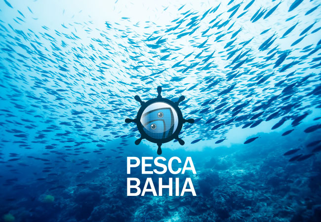 Pesca Bahia
